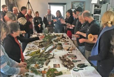 Regenerative farmers focus on fungi