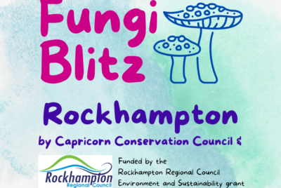 Fungi Blitz Rockhampton